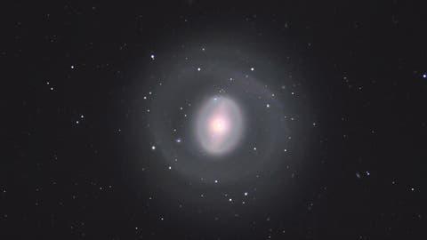 Die Ringgalaxie NGC1291