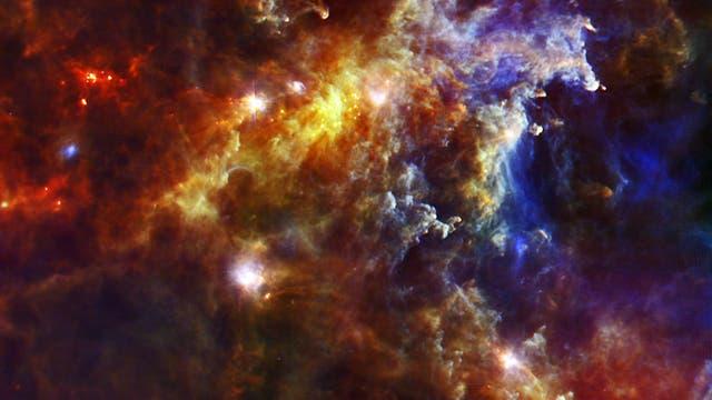 Junge Sonnen im Rosetten-Nebel