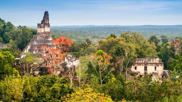 Tikal im Regenwald Guatemalas