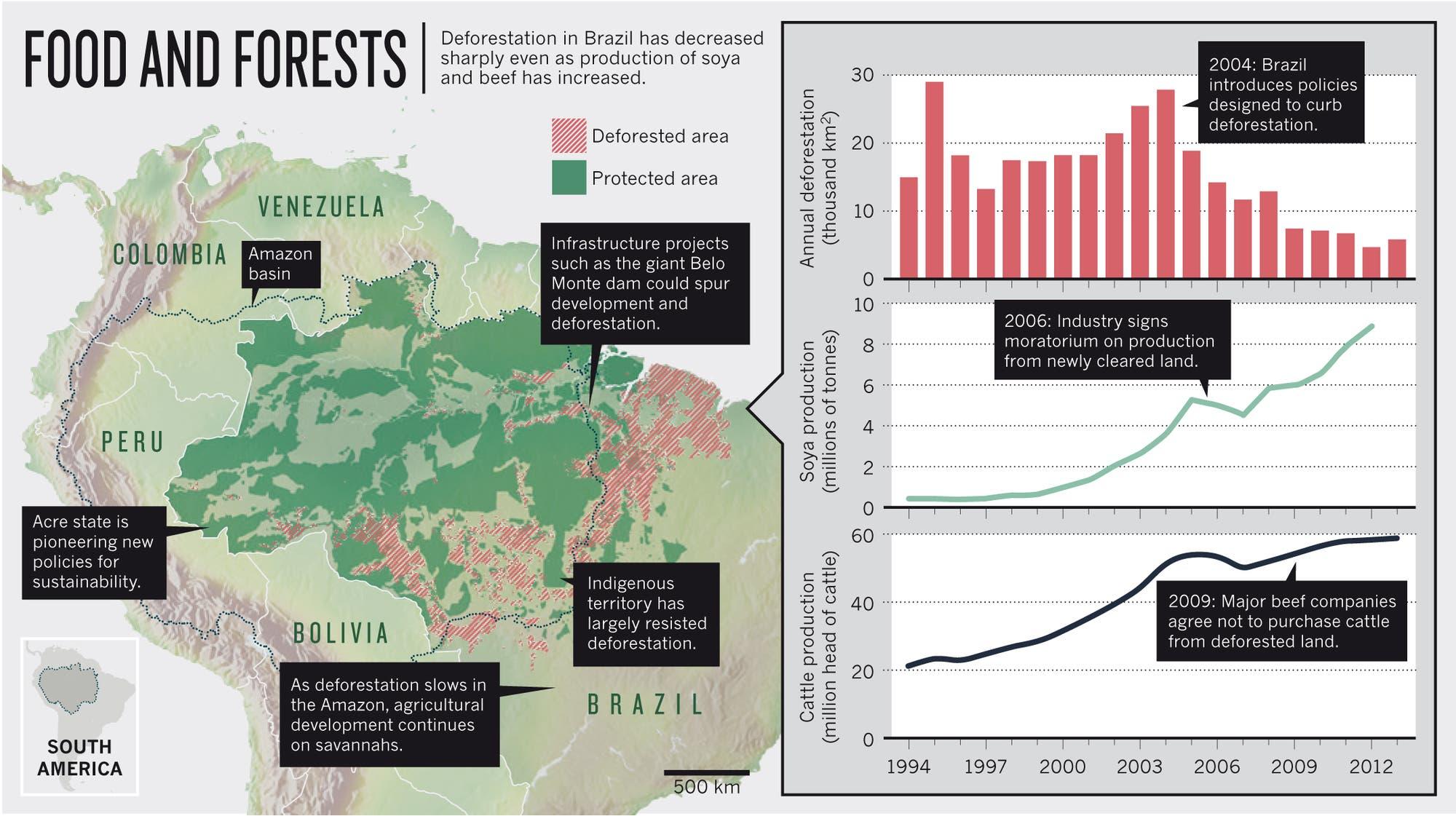 Die Karte zeigt deutlich, dass Indianerreservate und Naturschutzgebiete die Entwaldung deutlich bremsen können. Infrastrukturprojekte treiben sie dagegen richtig voran. Leider versuchen Bergbau- und Landwirtschaftslobbyisten den Schutzstatus von Reservaten parlamentarisch auszuhöhlen.