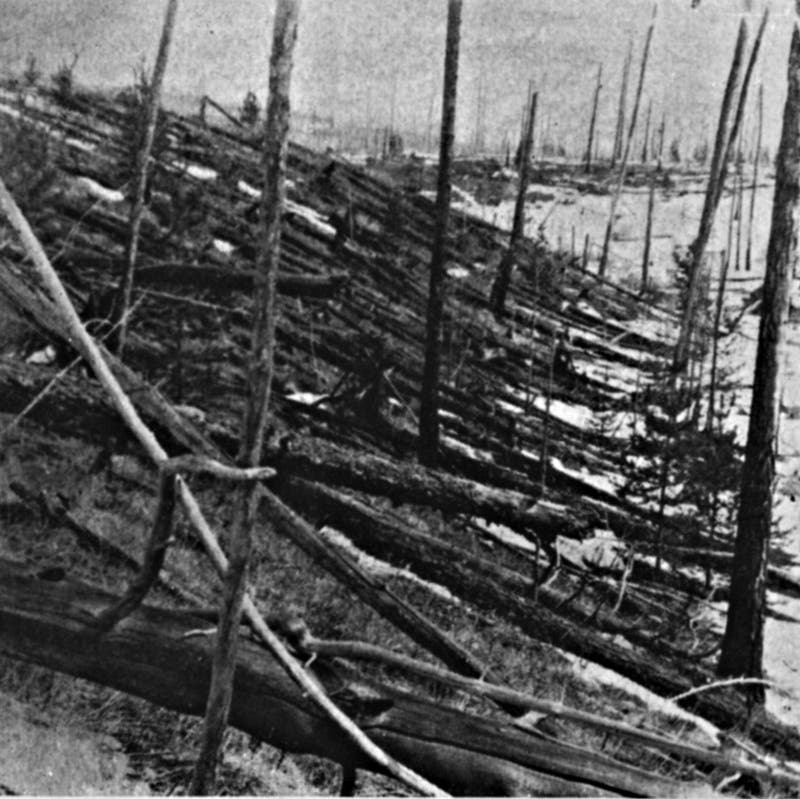 Tunguska-Katastrophe vom 30. Juni 1908: Im Herzen des zerstörten Gebiets