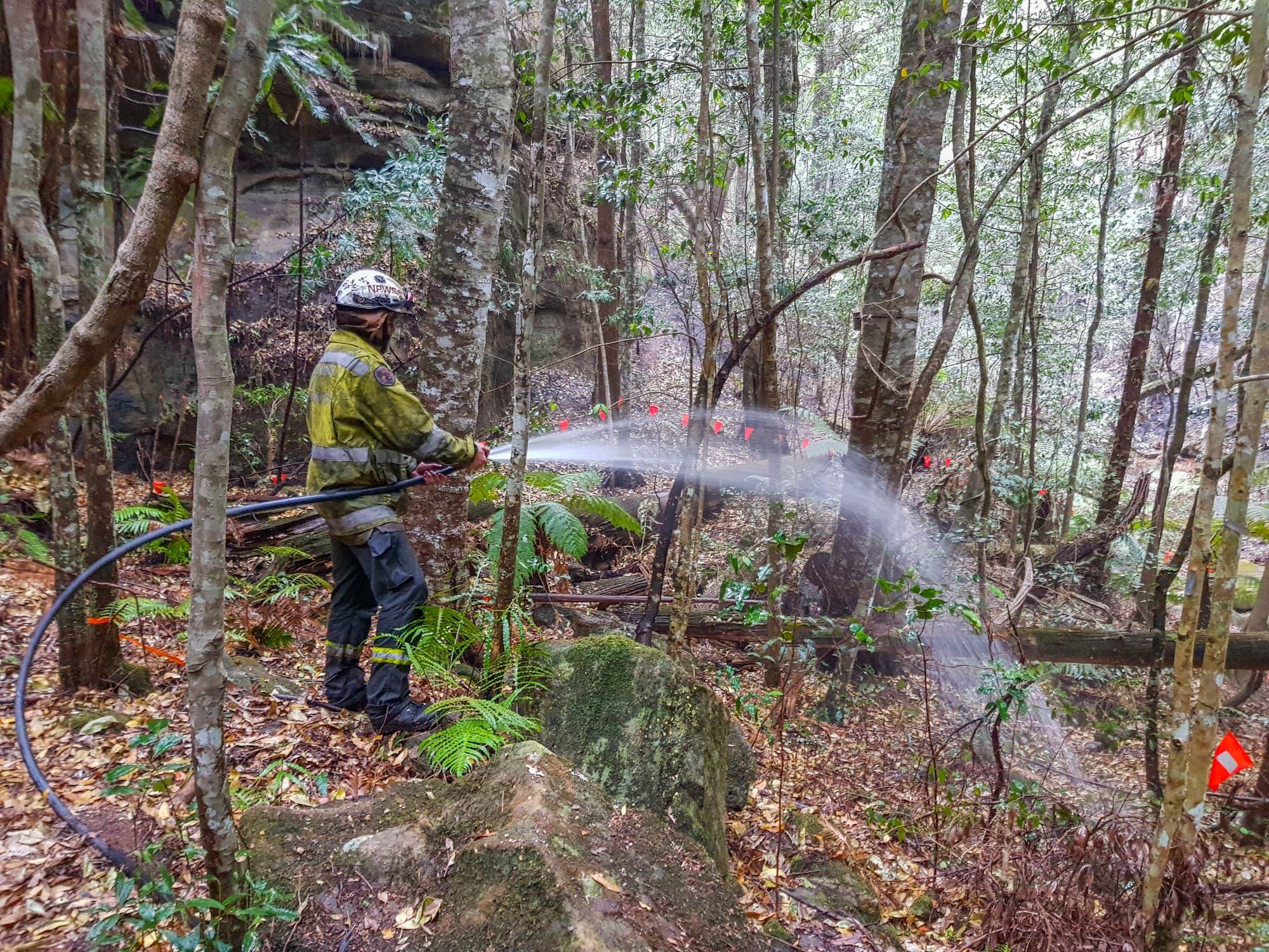 Feuerwehrmann wässert Unterholz