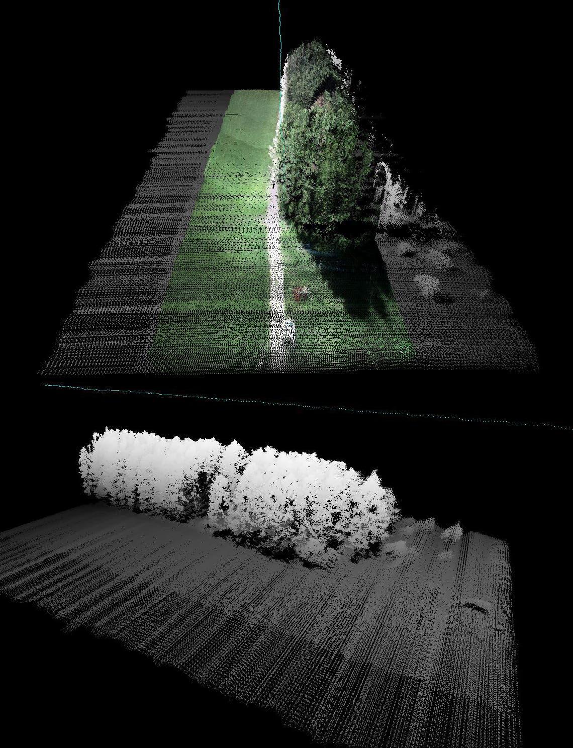 Laserscans vom Waldrand