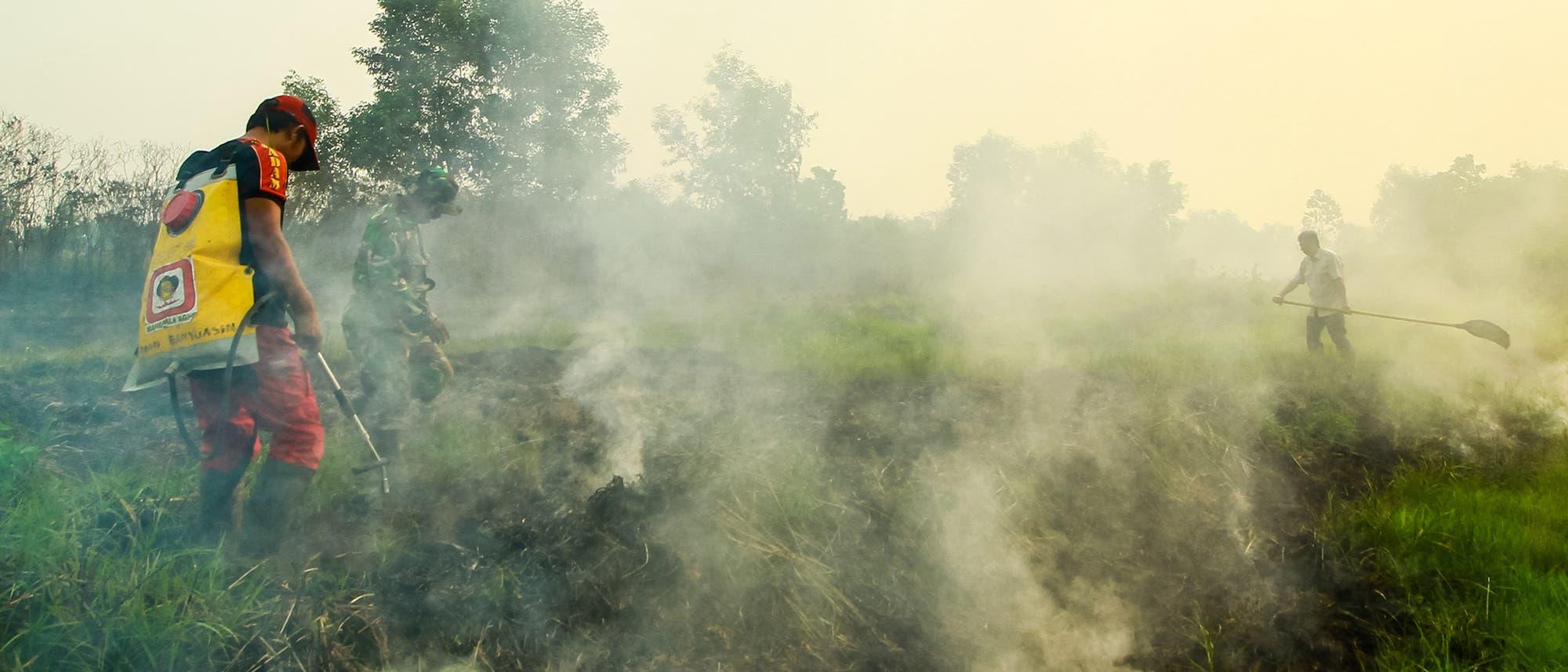 Feuerwehrleute bekämpfen einen Waldbrand in Banyuasin, Süd-Sumatra