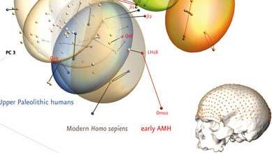 Migration des Homo sapiens