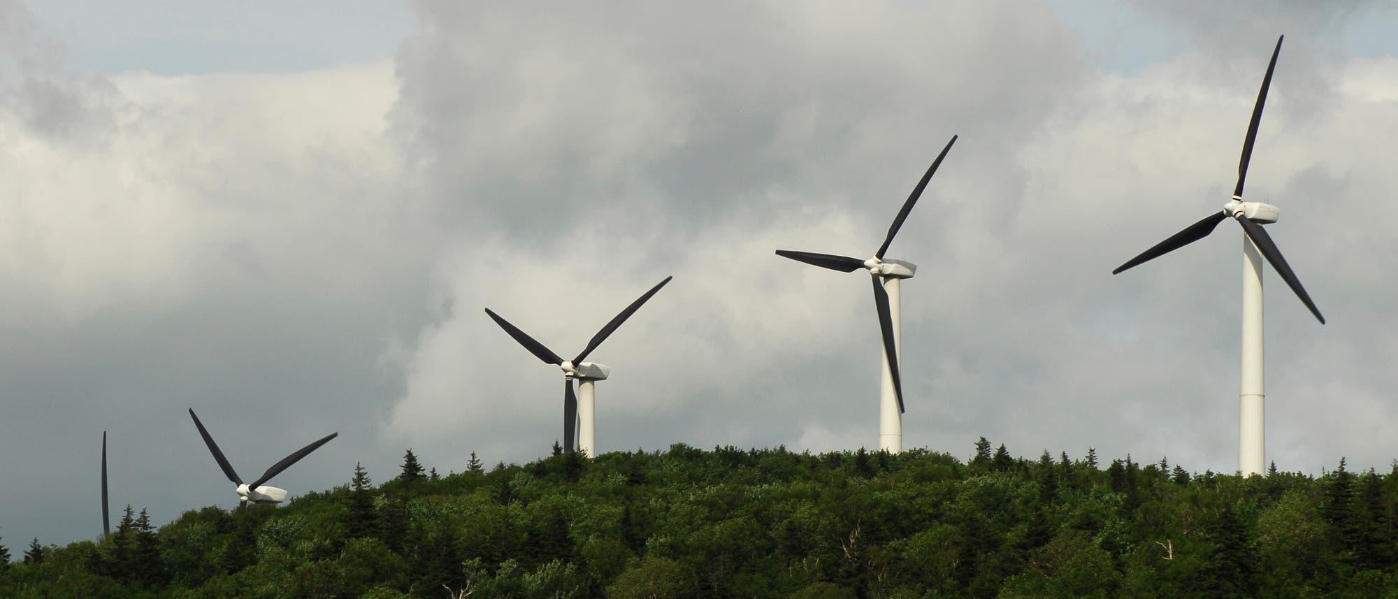 Windräder über einem Wald