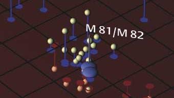 Die M81-Gruppe