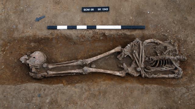 Römerzeitliches Skelett eines Geköpften aus Knobb's Farm, England.