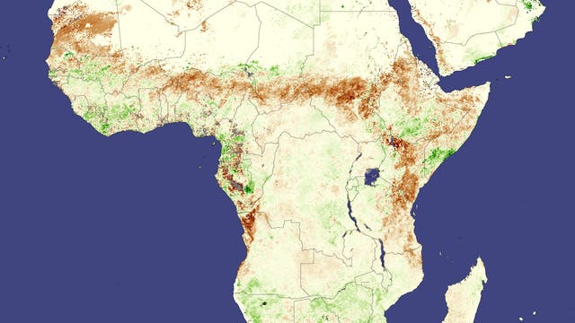 Südlich der Sahara durchzieht ein Band fruchtbaren Graslands Afrika: die Sahelzone. Fällt dort zu wenig Regen, kommt es leicht zu Dürren. So wie im Juni 2009, als saisonale Niederschläge ausblieben und Pflanzen vielerorts deutlich langsamer wuchsen als in den fünf Jahren zuvor (braune Farbtöne).