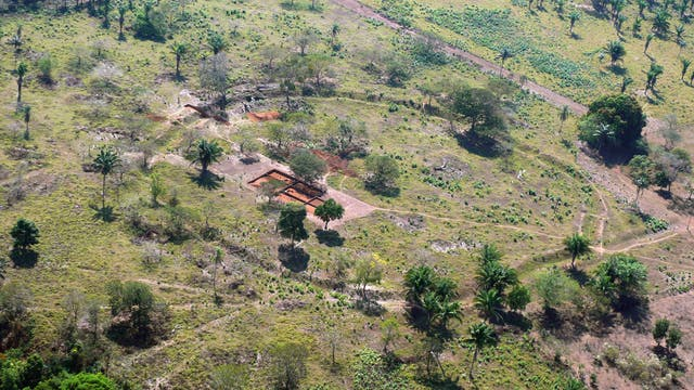 Kreisgrabenanlage im ehemaligen Regenwald