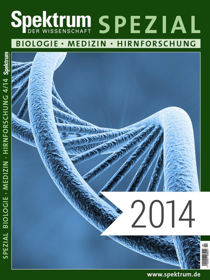 Spektrum der Wissenschaft Digitalpaket: Spezialreihe Biologie-Medizin-Hirnforschung Jahrgang 2014
