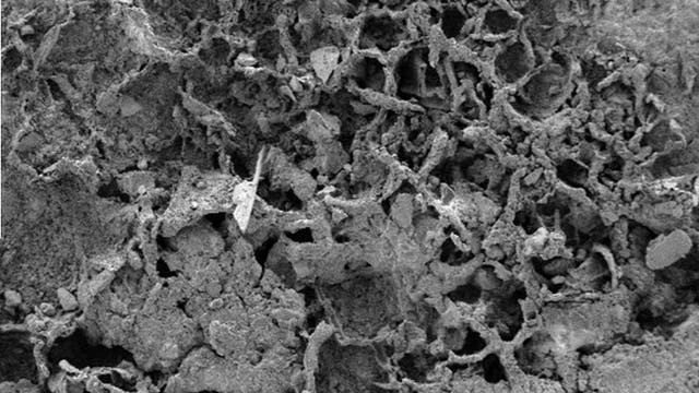 Elektronenmikroskopische Aufnahme einer netzartigen Struktur in Stein.