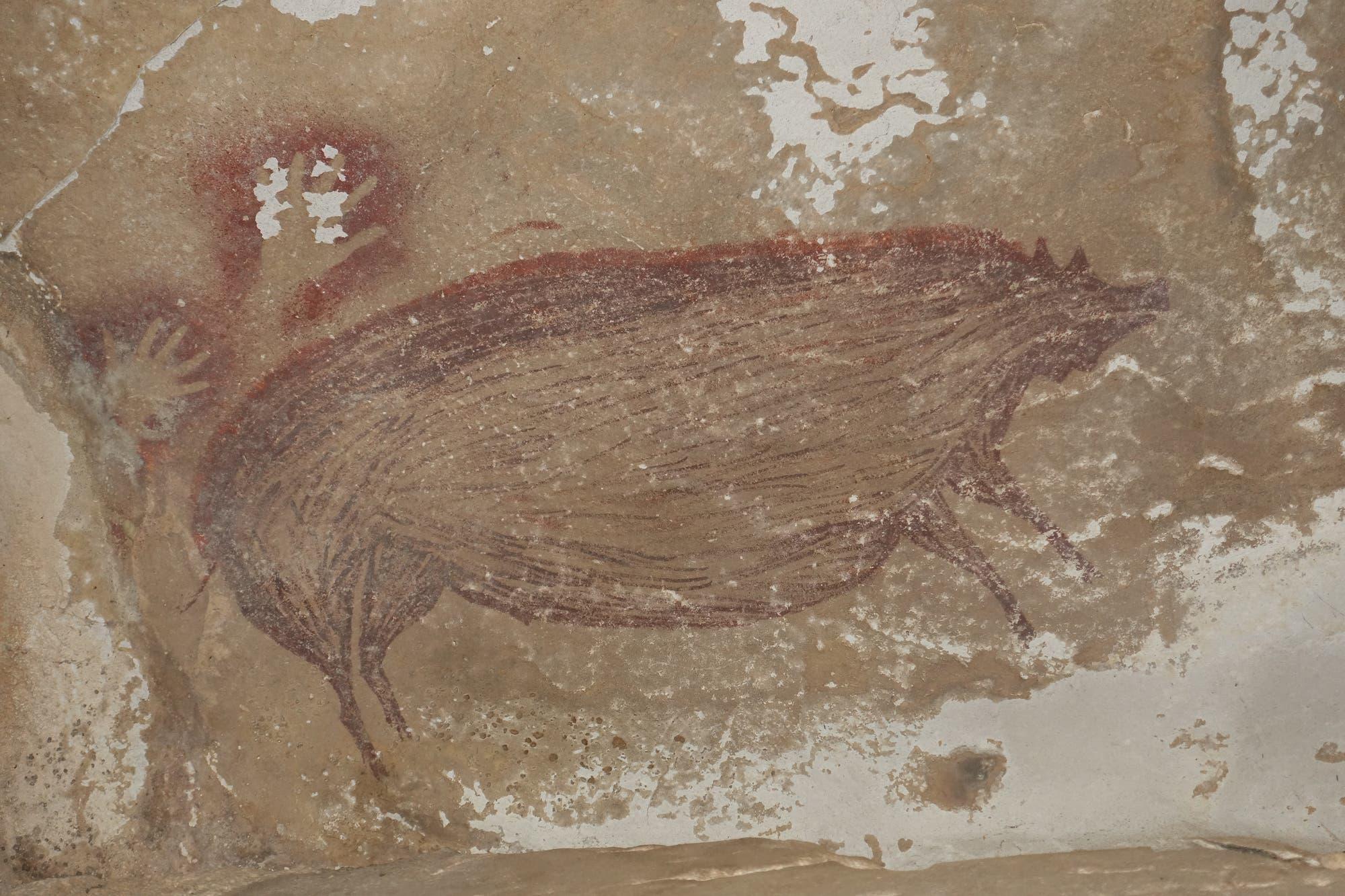 Sulawesi-Pustelschwein