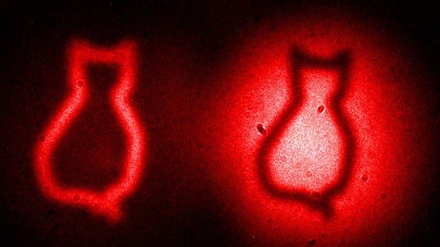 Fotografieren im Zeitalter der Quantenphysik