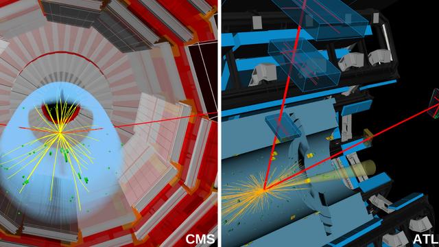 Zerfall des Higgs in Myonen im ATLAS- und im CMS-Detektor