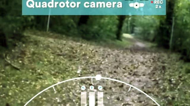 Drohne fliegt einen Waldweg entlang