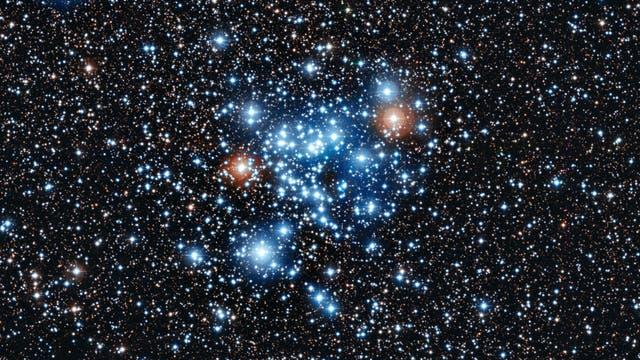 Der offene Sternhaufen NGC 3766
