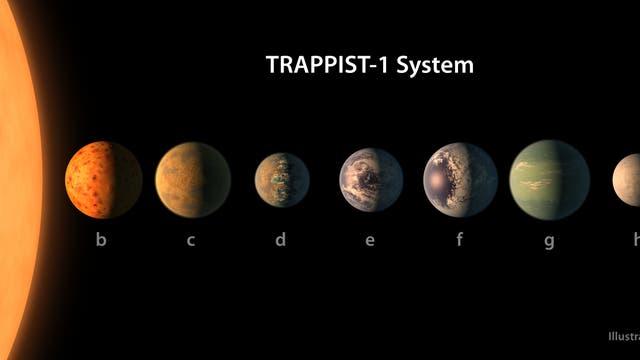 Nicht zu heiß und nicht zu kalt: Vier der Planeten werden von ihrer Sonne just so stark erwärmt, dass es auf ihrer Oberfläche Ozeane geben könnte, wie diese künstlerische Darstellung andeutet.