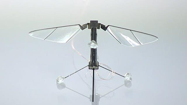 Fliegender Fliegenroboter