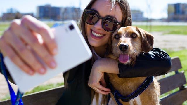 Umarmungen setzen Hunde oft unter Stress