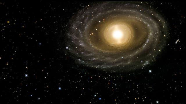 Die Galaxie NGC 1398