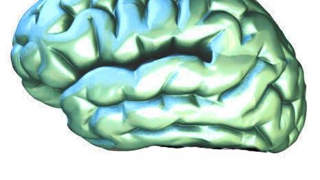 Gehirnstatue