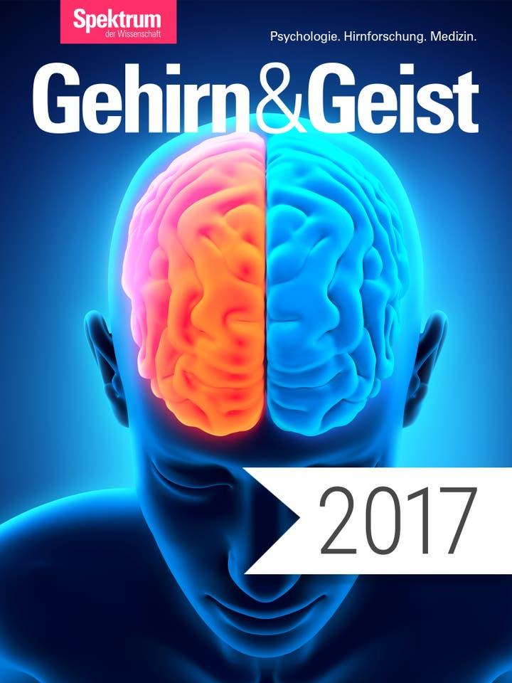 Digitalpaket: Gehirn und Geist Jahrgang 2017_Teaserbild