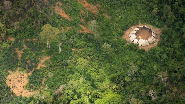 Yano genanntes Runddorf der unkontaktierten Yanomami-Indianer im brasilianischen Regenwaldgebiet.