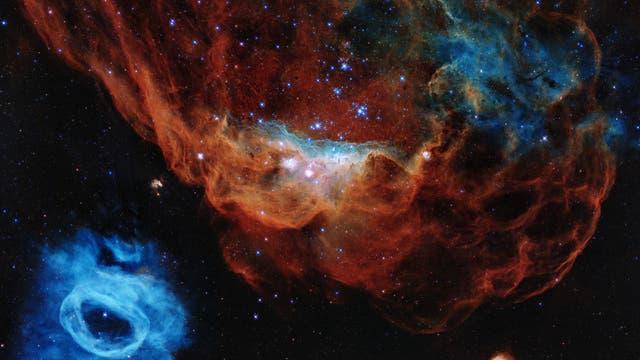 Das Porträt zeigt den Riesennebel NGC 2014 und seinen Nachbarn NGC 2020.