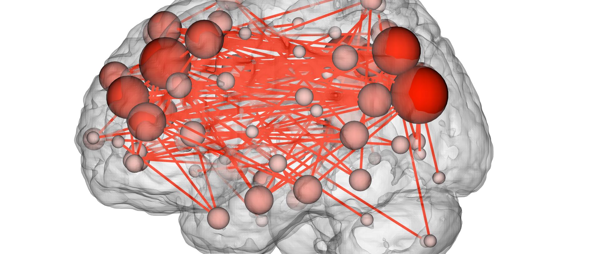 Neuronale Verbindungen