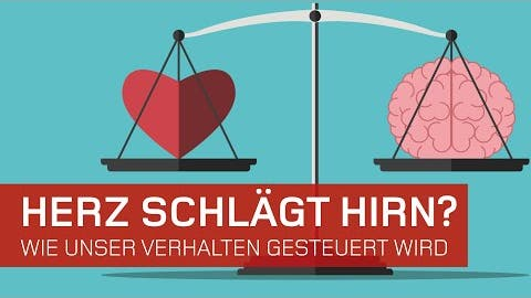 Herz Schlägt Hirn? Wie unser Verhalten gesteuert wird