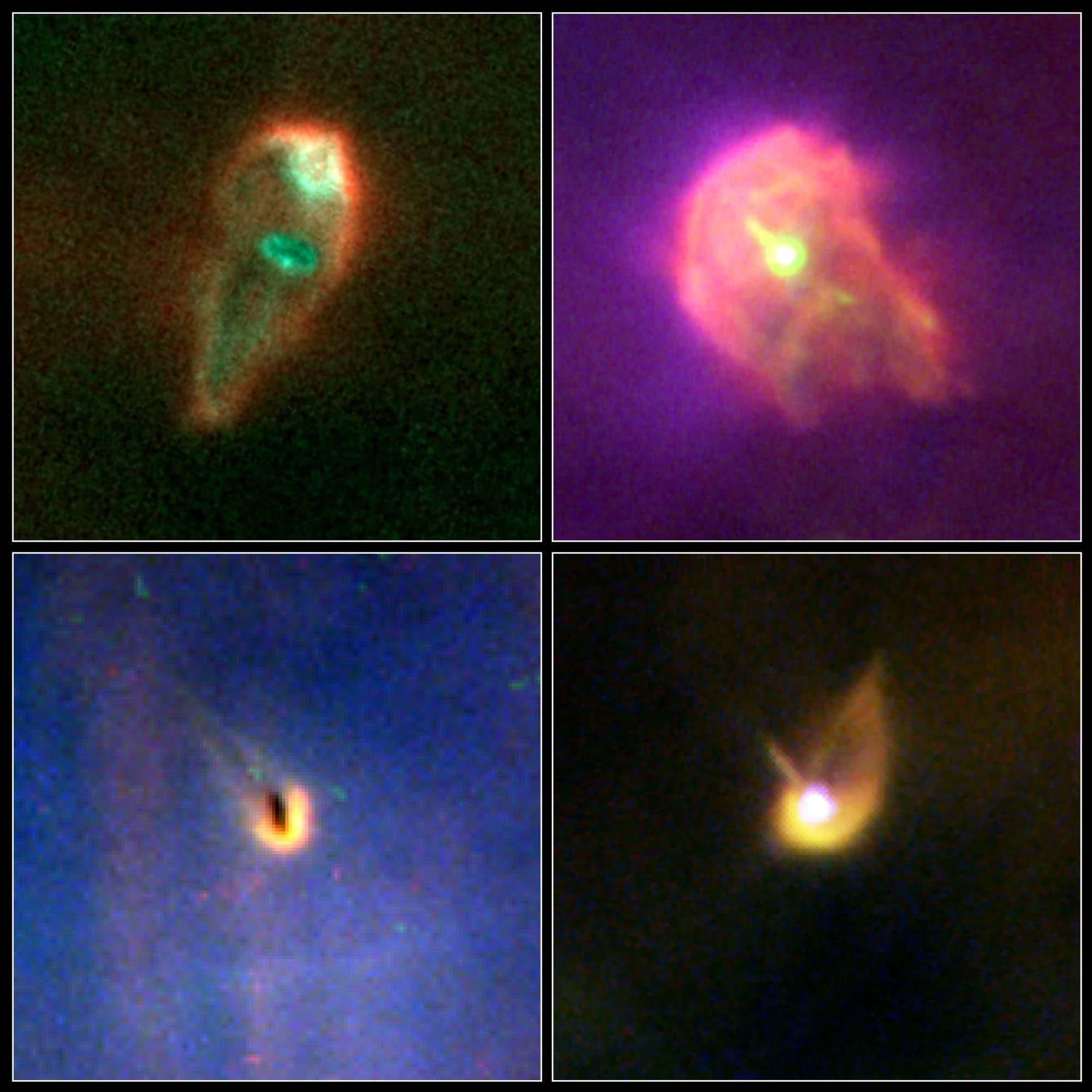 Proplyden im Orionnebel (Aufnahmen des Weltraumteleskops Hubble)