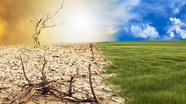 Eine künstlerische Darstellung macht Folgen des Klimawandels sichtbar.