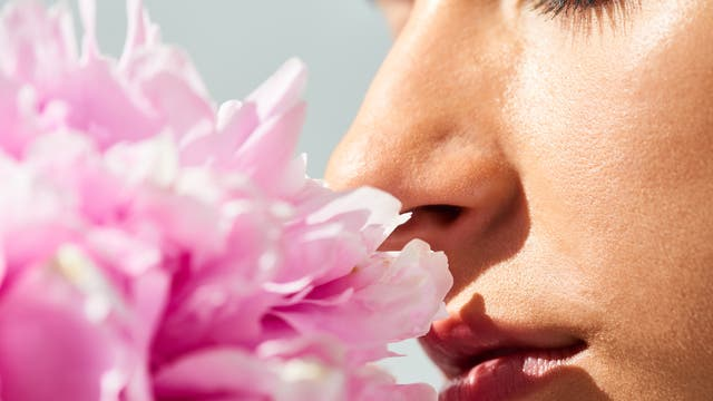Eine Frau riecht an einer üppigen Pfingstrose.