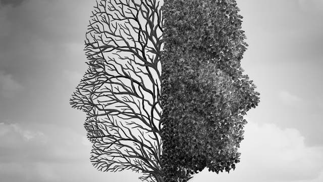 Kopf als Baum