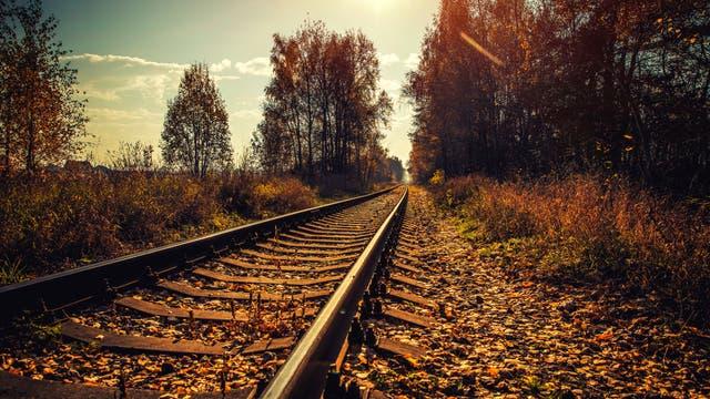 Schienen im Herbst