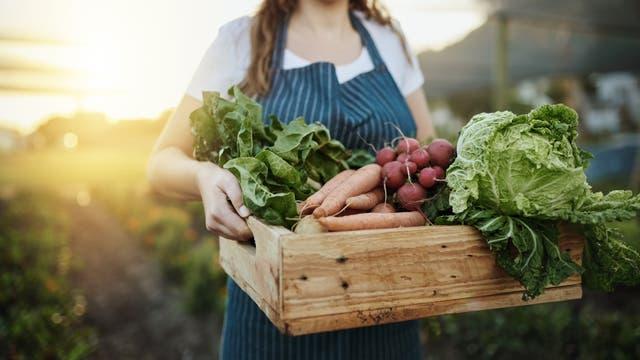 Frau mit Gemüsekorb in der Hand