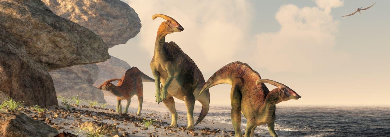 Drei Hadrosaurier flanieren am Strand. Die Abbildung ist eine künstlerische Darstellung, was streng genommen heißt, dass nahezu nichts daran stimmt.