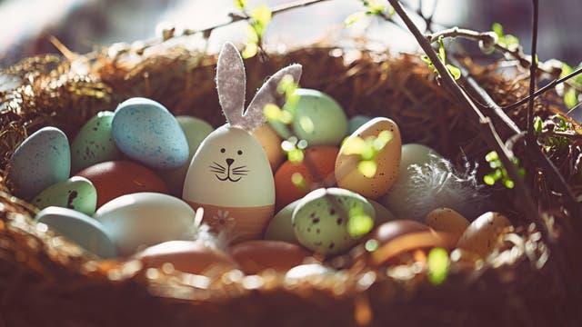 Ostereier samt Ei mit Hasenohren in einem Osternest.