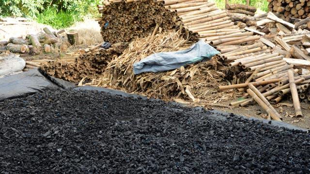 Ein Haufen Biokohle, ausgebreitet vor dem Rohstoff Holz im Hintergrund.
