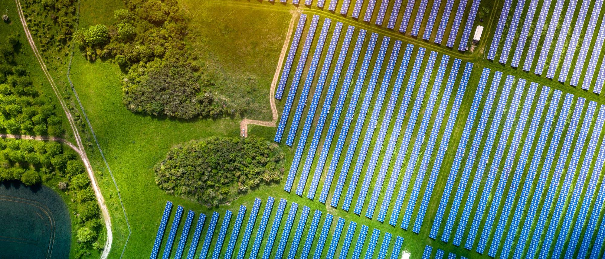 Ein Solarpark von oben