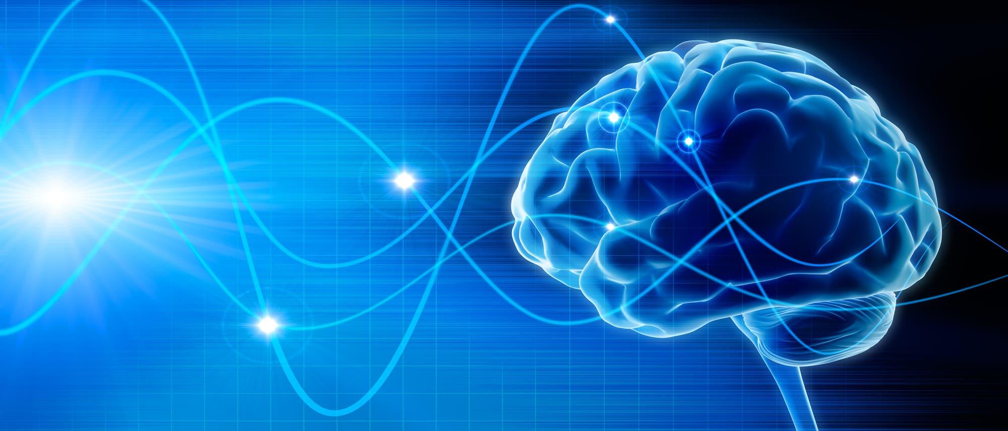 Gehirn und Gehirnwellen