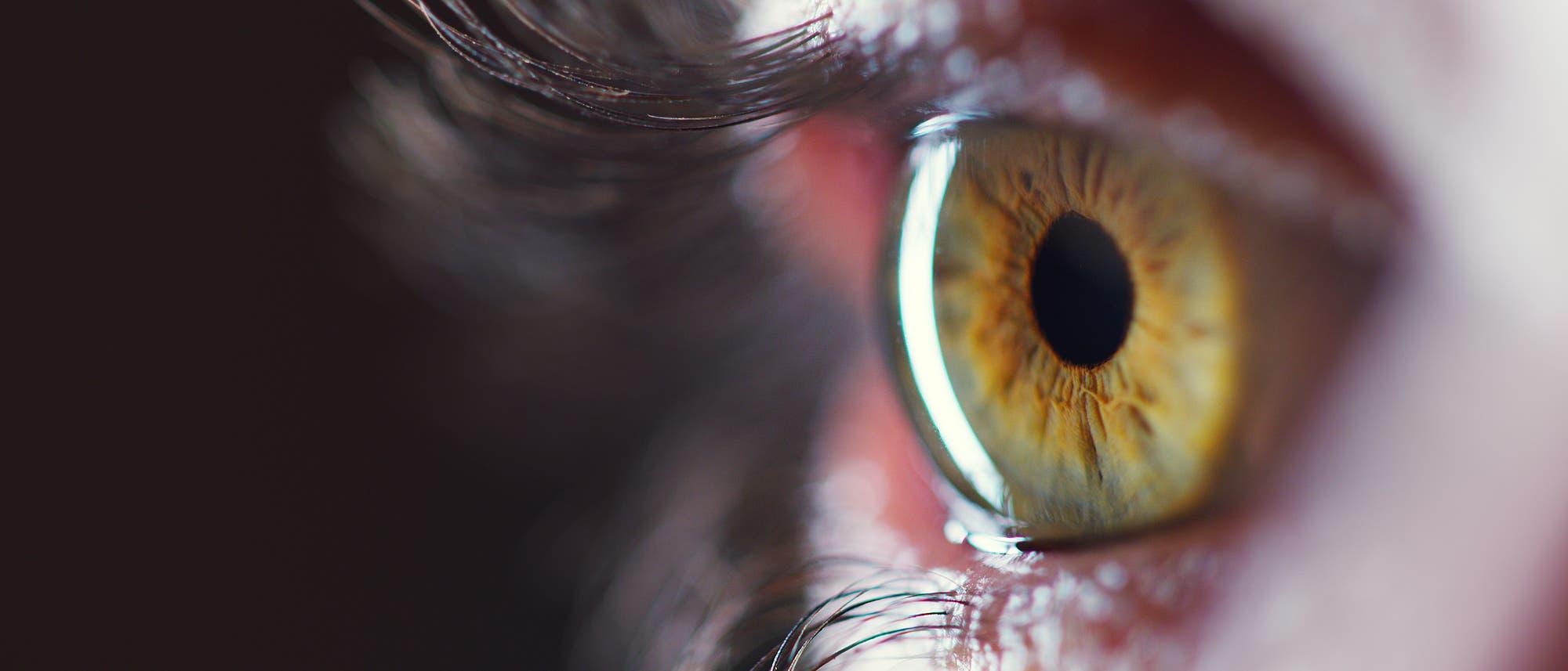 Ein Auge mit Pupille