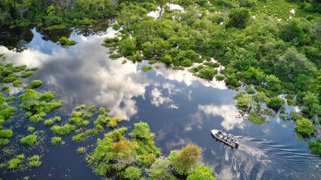 Ein Touristenboot im Kongo