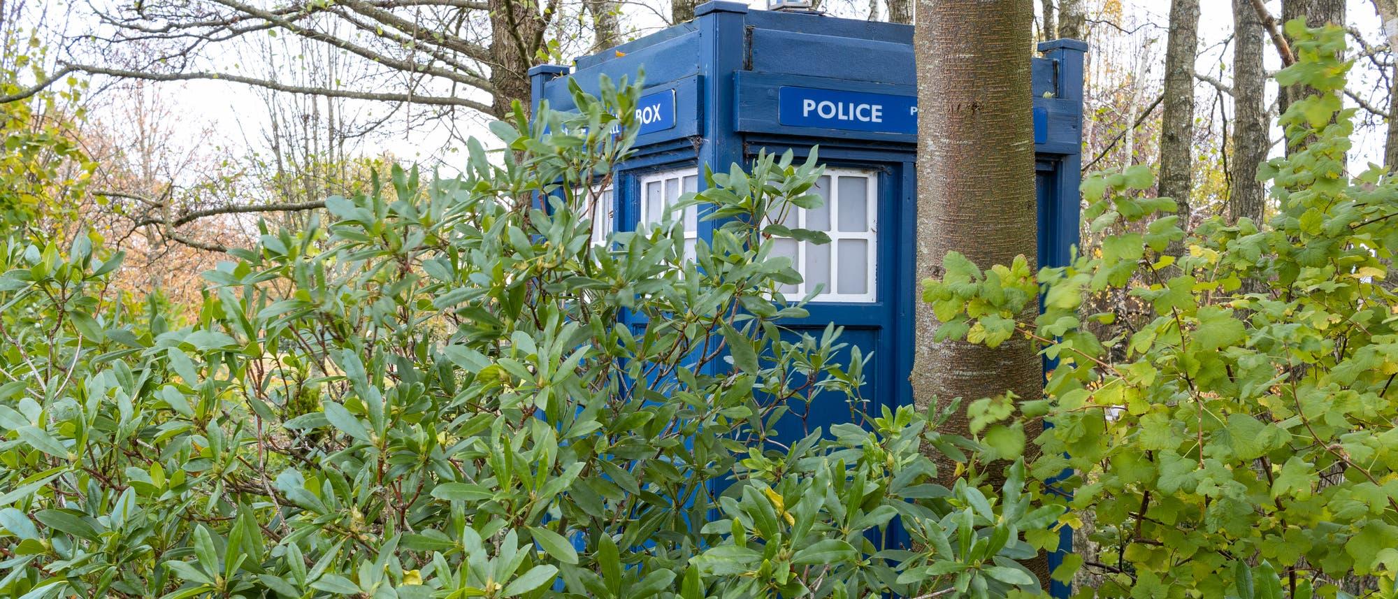 """Eine blaue Telefonzelle mit der Aufschrift """"Police Box"""" hinter Blättern."""