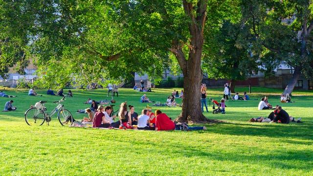 Gruppen von Menschen in einem sommerlichen Park.