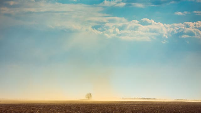 Staubwolken über einem Feld