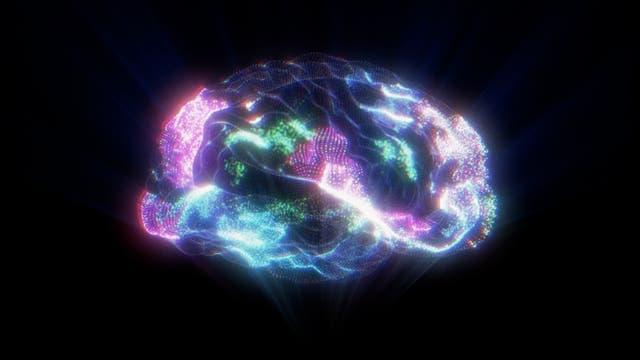 Gehirn Hologramm