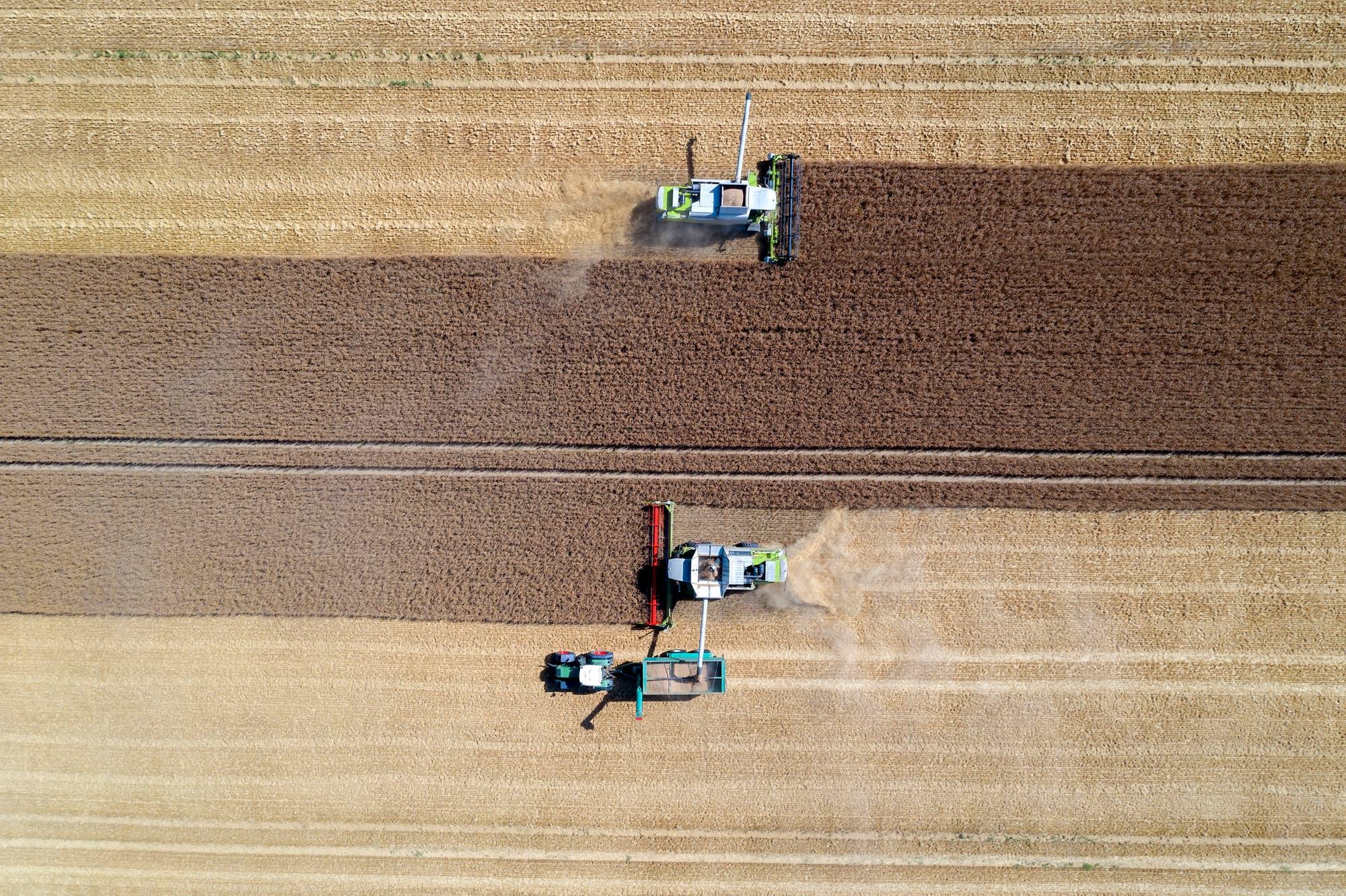 In der Landwirtschaft dominieren immer noch die Flächenprämien