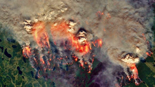 In Sibirien brannten auch in diesem Sommer große Flächen.